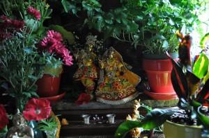 maharajas-room-2012_28